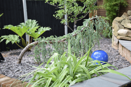 Tips to Create a Low Maintenance High Impact Garden