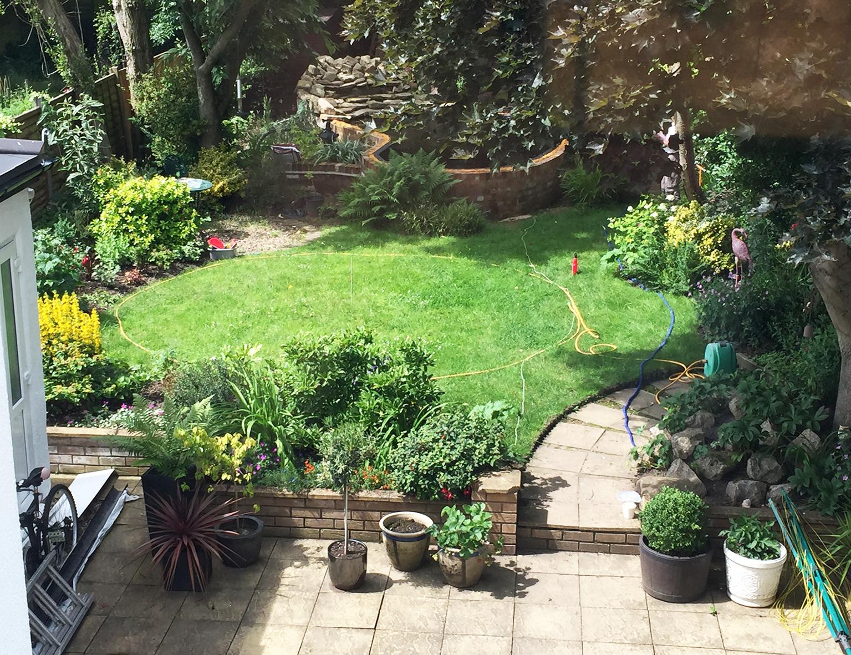 Garden Above Before