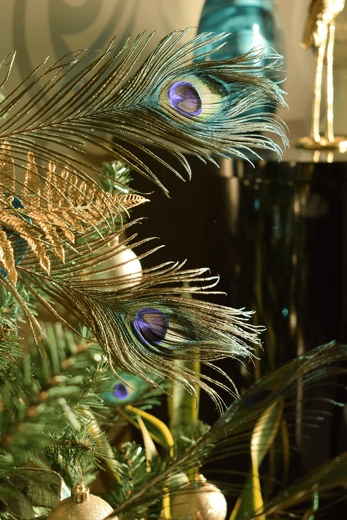 Christmas Peacock Feathers