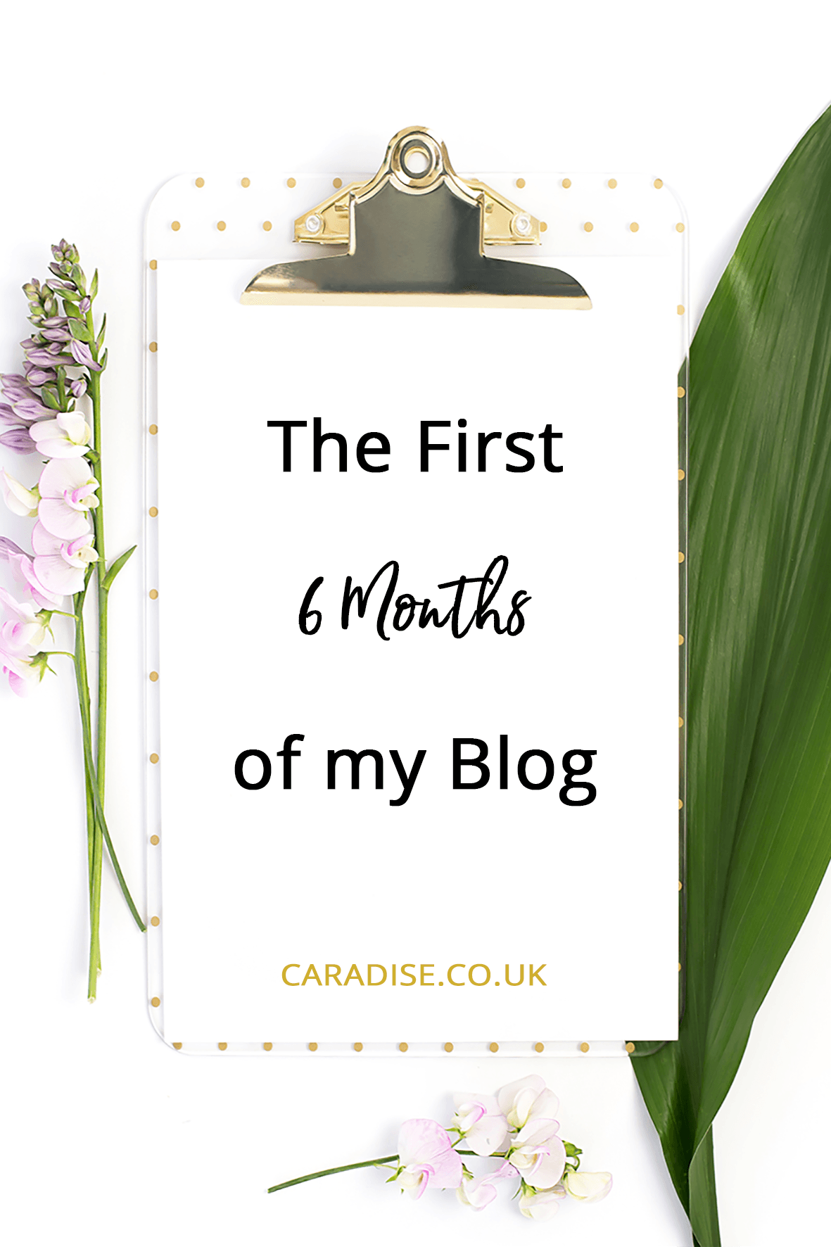A look back at the First 6 Months of my Blog in 2017